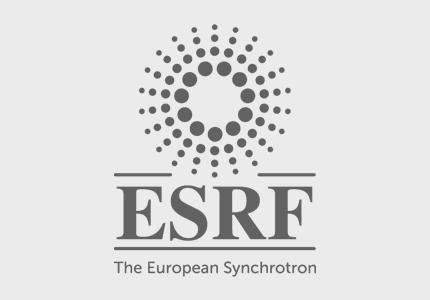 European Synchrotron Radiation Facility logo